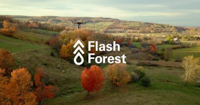 Zdroj: Flash Forest